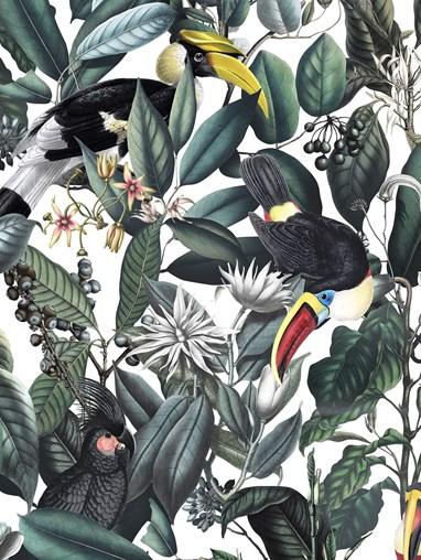 NeoTropical Natural Jungle Roller Blind