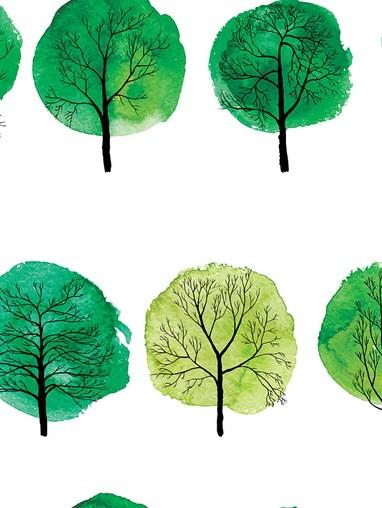 Forest Walks Green Roman Blind