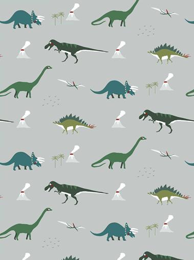 Sophie Allport Dinosaurs Roman Blind
