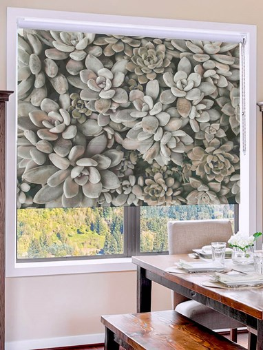 Succulents Mono Floral Roller Blind