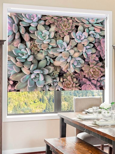 Succulents Muted Floral Roller Blind