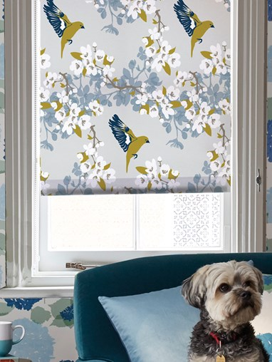 Greenfinch Roller Blind by Lorna Syson